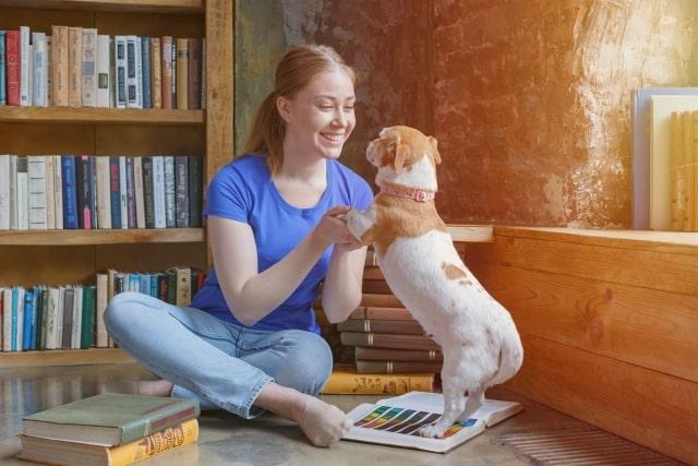 笑顔で見つめあう人と犬