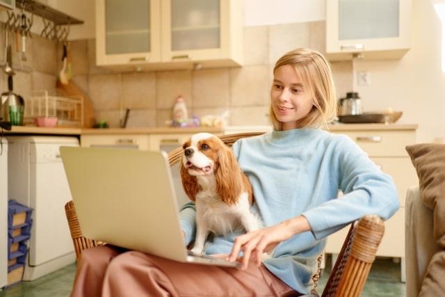 キッチンでパソコンを使う人と犬